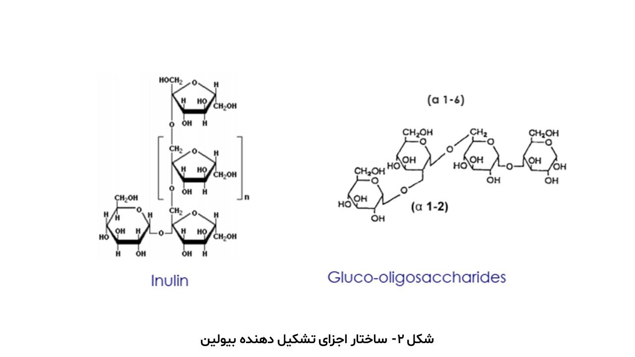 ساختار اجزای تشکیل دهنده بیولین
